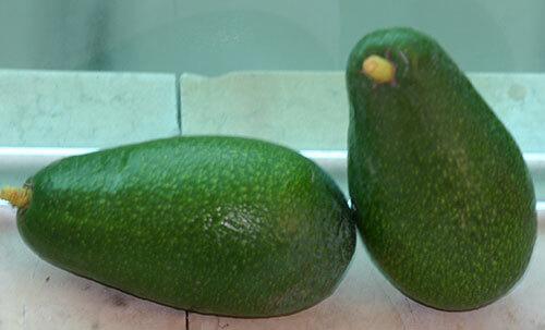 אבוקדו, פרי של אבוקדו, avocado