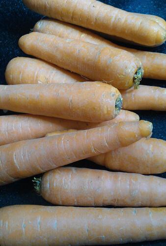 carrot, גזר