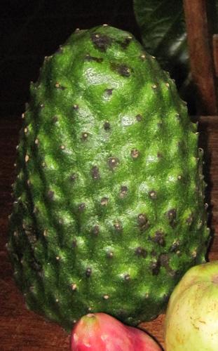 פרי של גואנבנה, guanabana