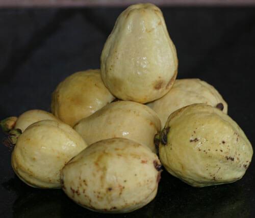 guava, גויאבה