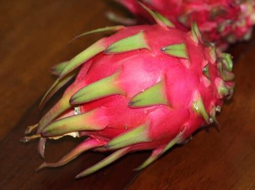 פרי פיטאיה, פטאיה, pitaya