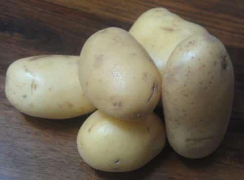 תפוח אדמה, תפוחי אדמה, גידול תפוחי אדמה, potato