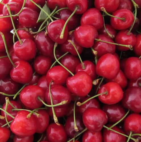 פירות גודגדן